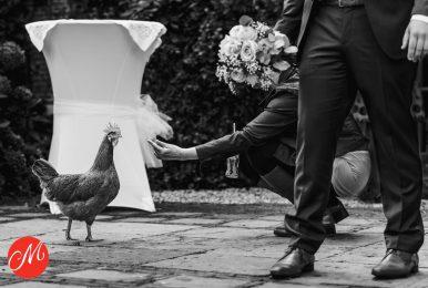 De kip of….. het boeket?